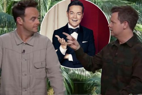 Ant and Dec joke Stephen Mulhern will 'present anything' after BGT spin-off taken off air
