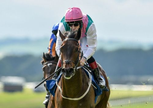 Ger Lyons hopeful Colin Keane will travel to Glorious Goodwood to ride Siskin in Sussex cracker