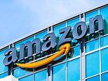 Amazon's store plan faces delay as developer goes bust