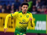 Jamal Lewis 'desperate to force through Liverpool move'