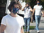 Shawn Mendes shows off his tattoos in a white T-shirt as he steps out with a matching friend in LA