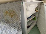 Student slams York University after finding stained mattress and freezer full of old food