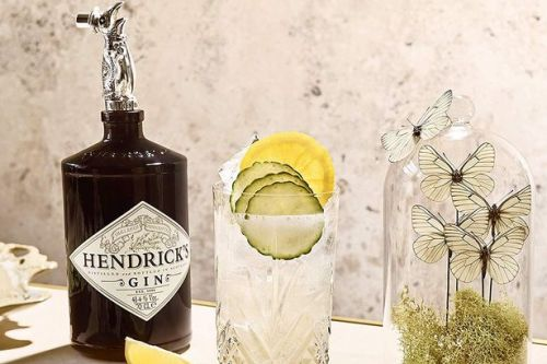 Best gins to make the perfect G&T with in 2020