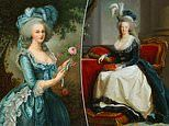 Marie-Antoinette's travel bag goes for €43,750 at auction