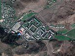 North Korea 'is using the bodies of political prisoners as FERTILISER to grow crops for guards'