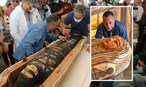 Archaeology news: 'Major discoveries' announced of 'more than 50' Egyptian sarcophagi