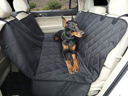 19 useful products to make long car rides with your dog comfortable and safe - from seatbelts to backseat hammocks
