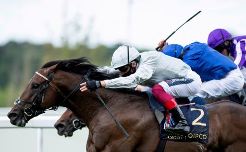 John Gosden's exciting Palace Pier on course for Group 1 Marois in France with unbeaten record on the line