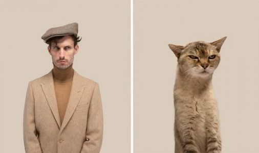Hairstyles, beards and moustaches are shared by cats and humans