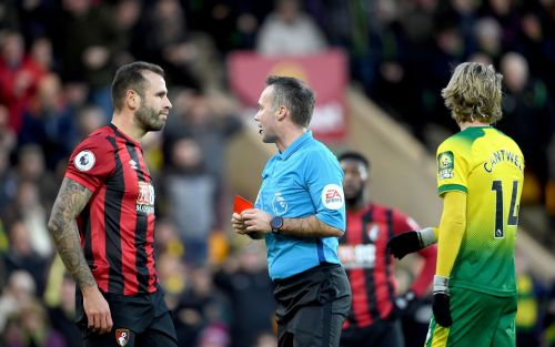 Bournemouth suffer damaging defeat to fellow relegation battlers Norwich after Steve Cook's first-half red card
