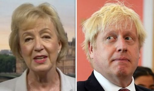 Brexiteer Andrea Leadsom says backstop will NOT be needed in new Brexit deal