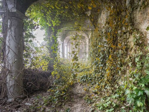 15 photos of hauntingly beautiful spaces that have been taken over by nature
