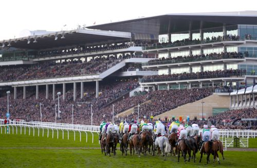 Cheltenham Races: Best betting tips for the live ITV racing at Cheltenham today