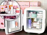 Do your cosmetics really deserve their own minifridge?