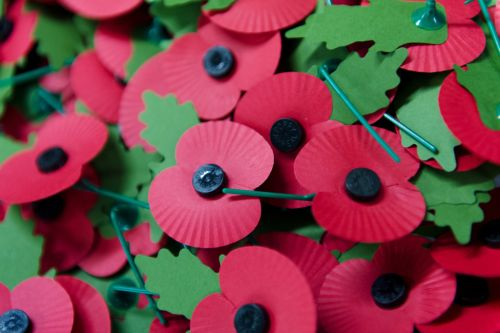 How to support the 2020 Poppy Appeal