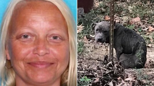Smirk of 'cruel' dog owner 'who starved her pets until they were skin and bones'