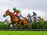 Robin Goodfellow's racing tips: Best bets for Thursday, May 23