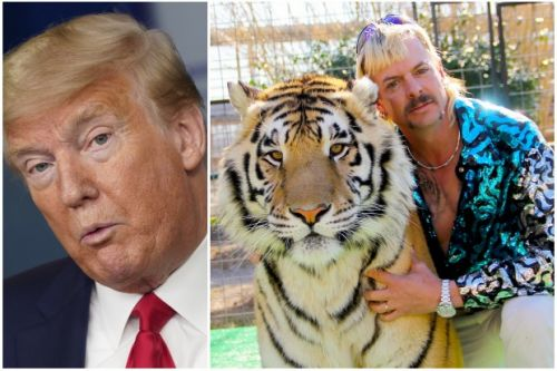 Donald Trump discusses pardoning Tiger King's Joe Exotic during corona briefing