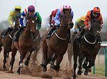 Robin Goodfellow's racing tips: Best bets for Tuesday, January 21