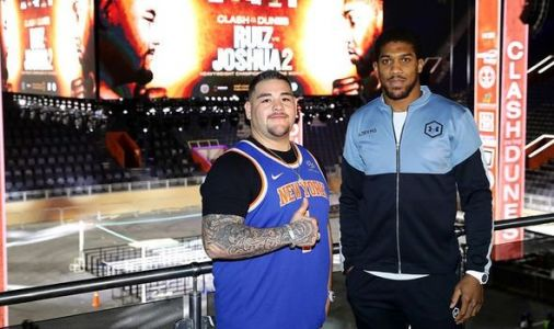 Joshua fight TV channel: How to watch Andy Ruiz Jr vs Anthony Joshua 2 on TV