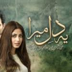 UK Ratings: 'Ye Dil Mera' tops Urdu genre in weekly chart
