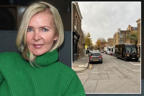 Horrified workmen describe moment axe-wielding muggers attacked screaming Amanda Wakeley