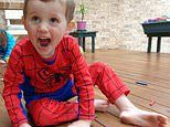 Jubelin claims boss told him 'no one cares about that kid' about William Tyrell