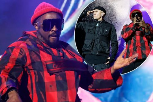 Will.i.am met by police after accusing cabin crew of 'racism' on Qantas flight