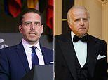 Hunter Biden and Joe's brother Jim 'targeted key Democrats including Cuomo, Schumer' for investment