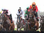 Robin Goodfellow's racing tips: Best bets for Friday, August 7
