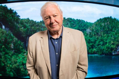 Sir David Attenborough to focus on 'dominant force changing the Earth' in new documentary series