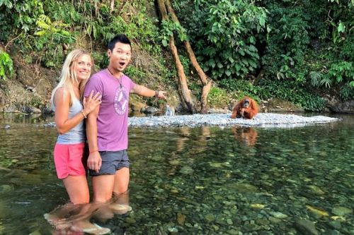 Couple stranded in paradise with orangutans - and the hotel is £5 a night!
