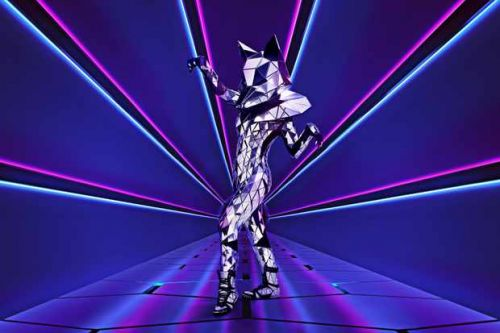 Who is Fox on The Masked Singer?