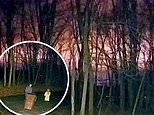 Bright flashes light up the night sky in Ohio in spooky video captured by a doorbell camera