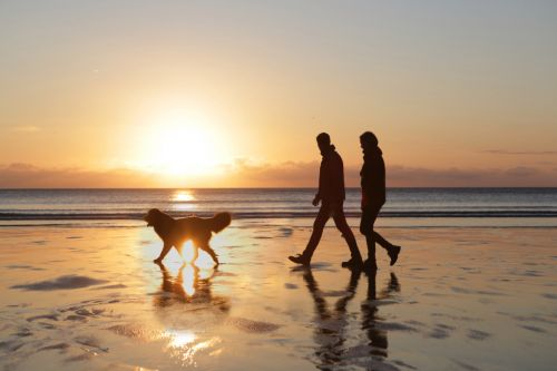 Taking a walk on the beach could help improve your mental health, says study