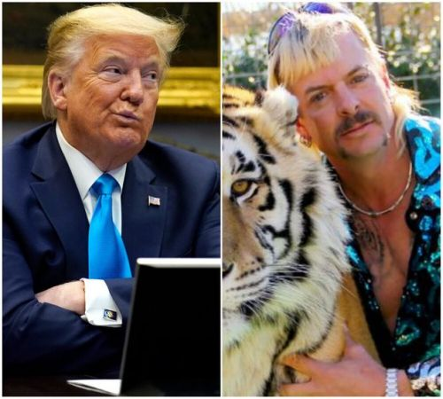 Donald Trump Says He'll 'Take A Look' At Tiger King Star Joe Exotic's Prison Sentence