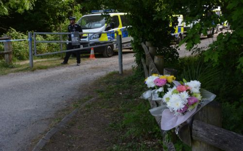 Man, 29, arrested over Louise Smith murder