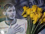 Help us avoid Emiliano Sala payment: Cardiff seek Premier League clubs' advice