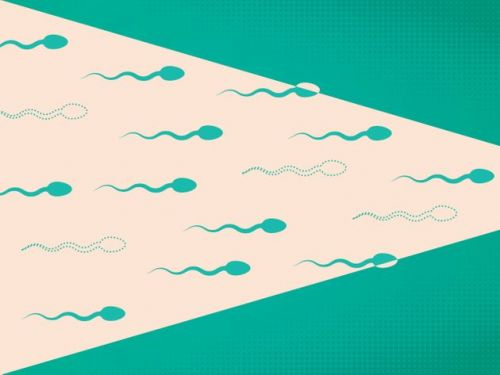 Would You Want Your Sperm Donated After Your Death? These Scientists Think You Should