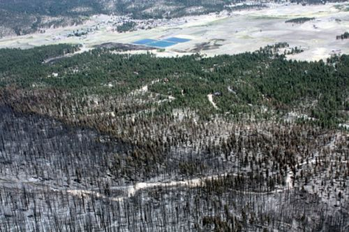 Good wildfire news? Evidence from the Bootleg Fire supports thinning forests