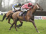 Robin Goodfellow's racing tips: Best bets for Saturday, December 14