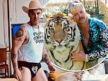 'Robbie Williams slips back into THOSE famous Rock DJ pants for Tiger King-themed workout
