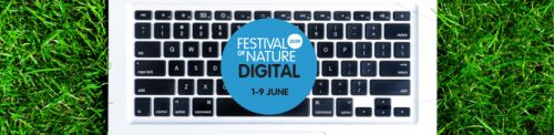World-first digital science festival to take place this summer