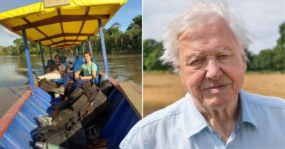 David Attenborough's A Perfect Planet crew 'barely escape with lives' after boat capsizes in Peru