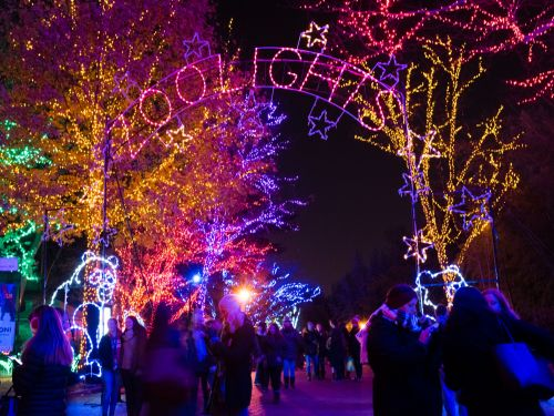 30 jaw-dropping holiday light displays from around the world