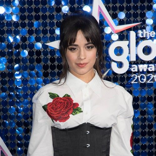 Camila Cabello & Shawn Mendes join protests in Miami