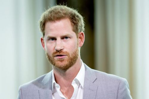 Prince Harry 'brought own security' to UK after Royal Family 'cut him off'