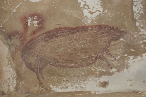 This painted pig is the world's oldest figurative art