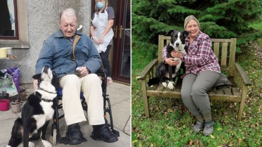 Woman travels 600 miles to reunite 93-year-old with his beloved dog