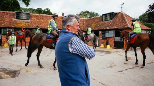 Paul Nicholls: McFabulous can headline a good afternoon at Fontwell on Sunday